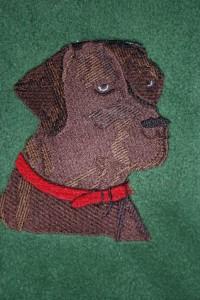 Brauner Labrador auch in schwarz und hell möglich